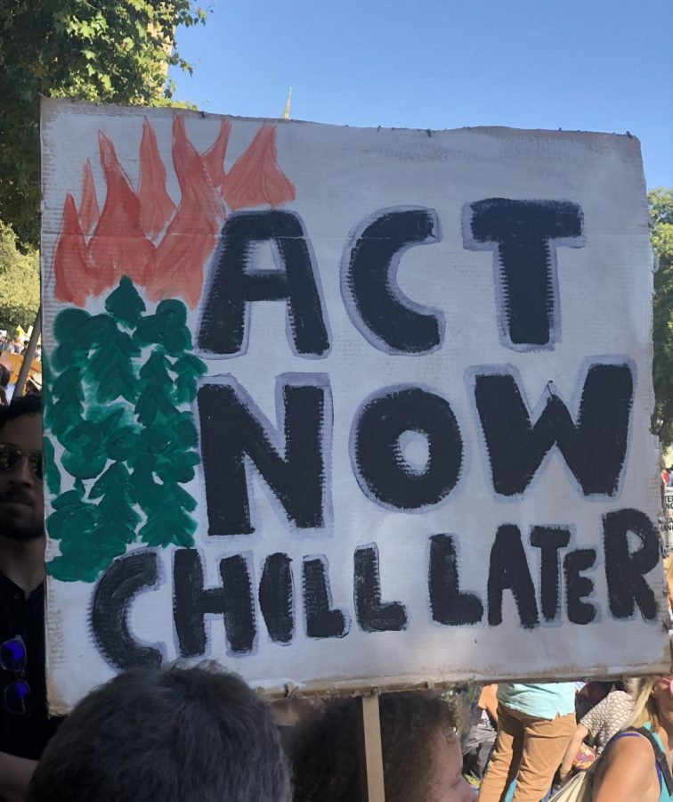 Photo Gallery: Signs from the Global Climate Strike
