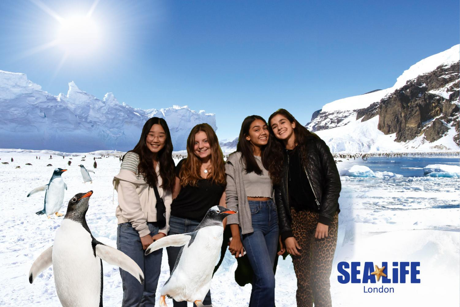 Amber Auh ('21), Solenne Jackson ('21), Helena Hansen ('21), and Amelia Learner ('21) (left to right) pose with the animated backdrop at Sea Life Centre London Aquarium. They're on the alternative called