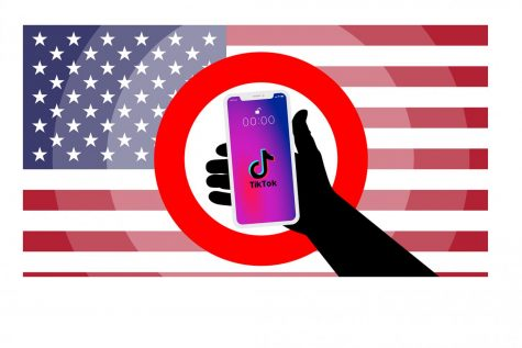 Trump administration should not ban TikTok