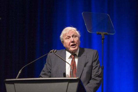 Community attends David Attenborough 'A Life on Our Planet' panel discussion