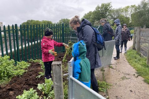 Community members garden at Kentish Town City Farm for Community Service Day. Groups of 6 attended various sites throughout London May 23.