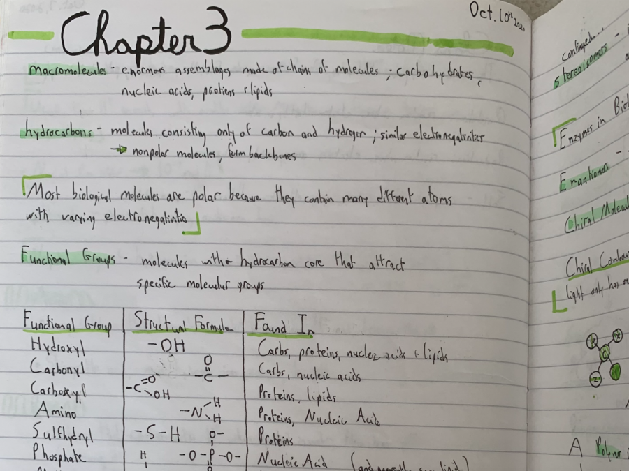 Evelyn Bond ('22) organizes her AP Biology notes using colorful subheadings and diagrams. From notetaking to bullet journalling, putting a pen on paper comes in a variety of forms and each serves different purposes.